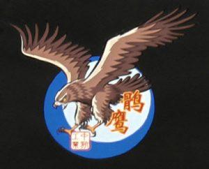 Le logo officiel du FC-31, avec son nom