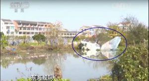 J-10S - accident - 8 décembre 2015 - bird strike