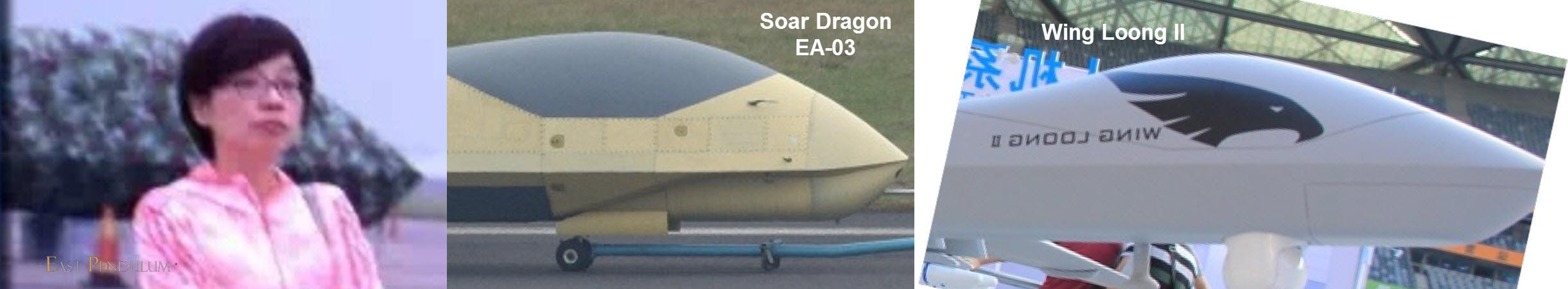 2016-09-09-quand-un-harrier-cache-un-dragon-46
