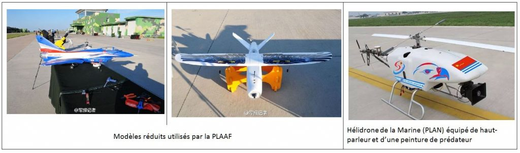 bird-strike-uav-1