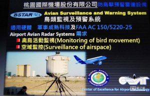 Bird detection radar