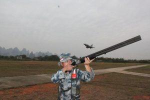 décollage et atterrissage : éviter les collisions avec les oiseaux