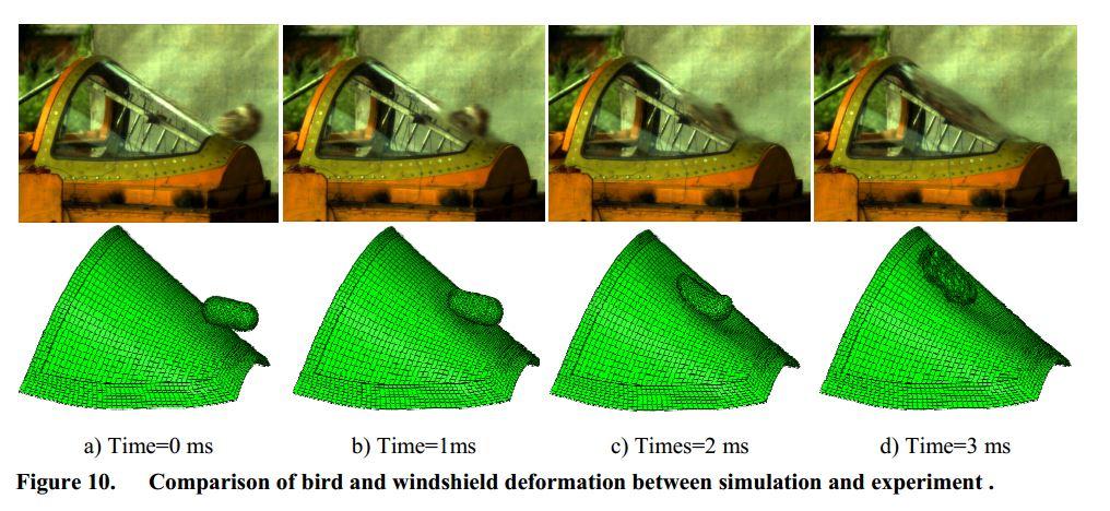 canopy bird impact - collisions avec des oiseaux