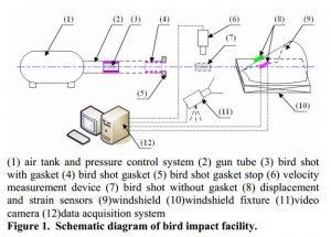 schematic-diagram - collisions avec des oiseaux